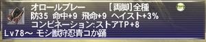 20100820_2.jpg