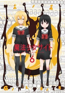 魔法少女サイト 第6巻.jpg